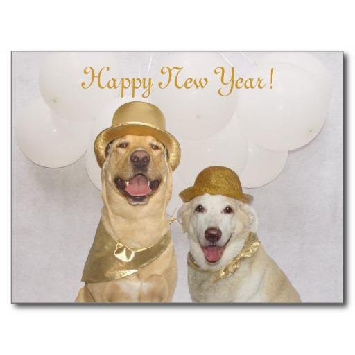Imagenes Feliz año nuevo con fotos de perros