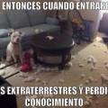 Imagenes De Perros Con Frases Divertidas Para Whatsapp Y Facebook