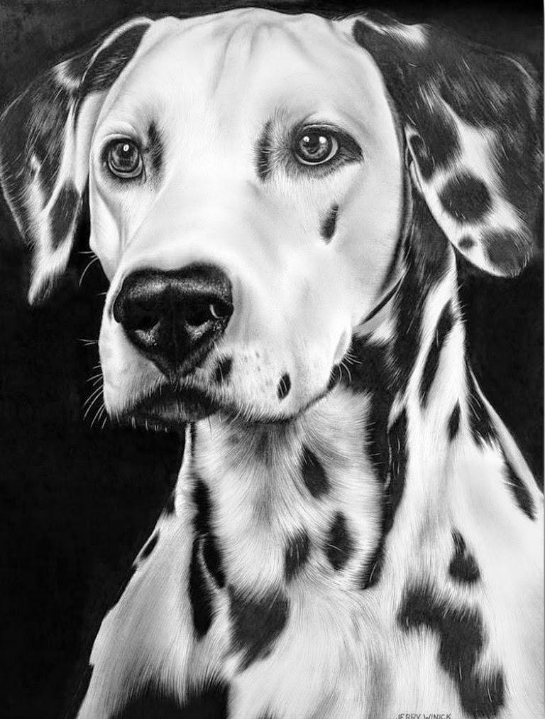 Lindos Dibujos A Lapiz De Perros
