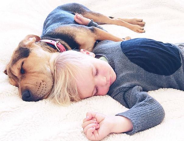 niño durmiendo con su perro