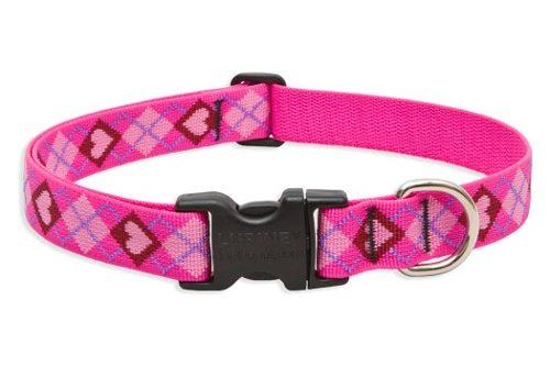 Imagen de collar mediano para perro