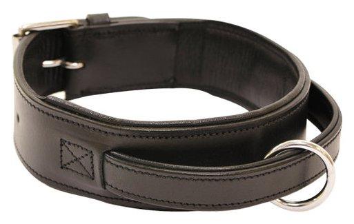 Imagen de un collar de cuero para perro