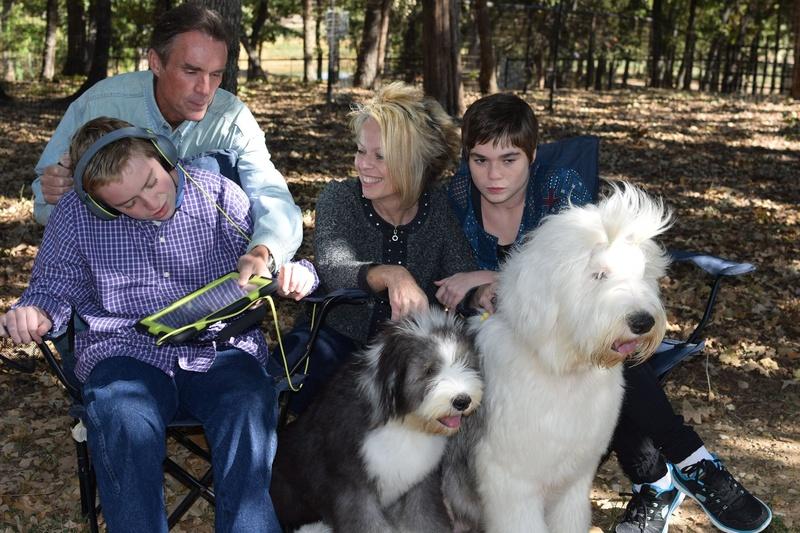 Perro de familia apto para los niños Viejo Pastor Inglés