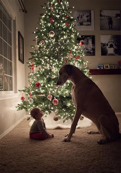bonita-imagen-de-perro-en-navidad-con-nino-para-fondo-de-celular