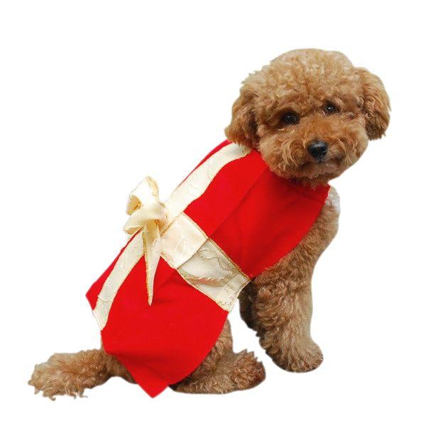 imagen-de-un-perrito-disfrazado-de-regalo-de-navidad