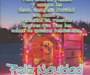 Imagenes De Perros Con Mensajes Para Desear Feliz Navidad