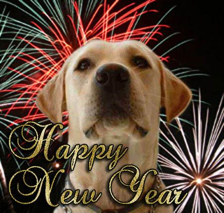 imagenes-con-perros-happy-new-year