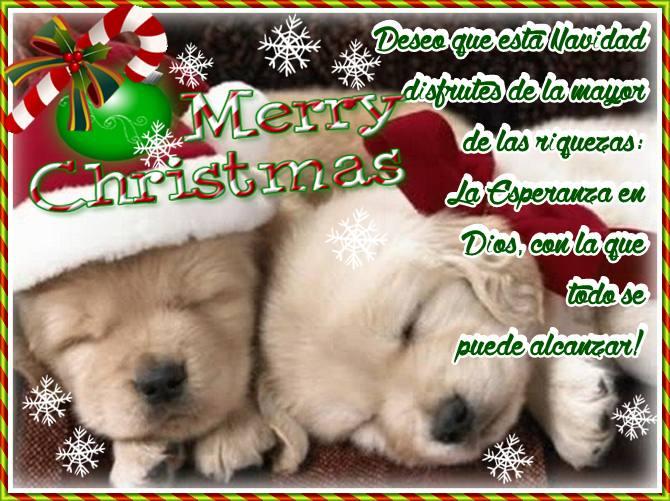 imagenes-de-perritos-con-mensajes-de-navidad