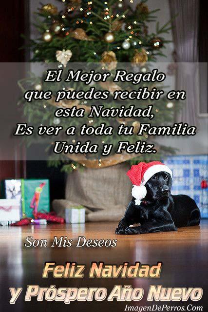 imagenes-de-perritos-para-desear-feliz-navidad