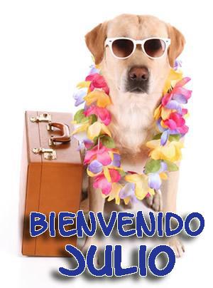 Bienvenido Julio Imagenes de Perros