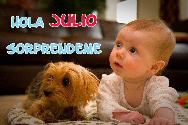 Hola Julio Imagenes con perros para whatsapp