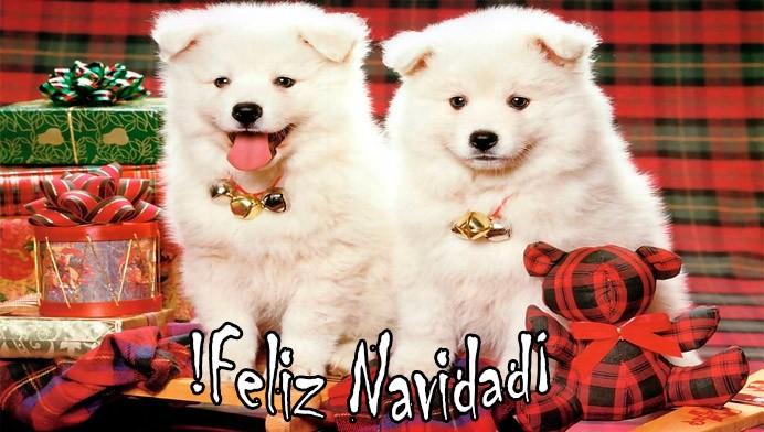 Cachorros Feliz Navidad