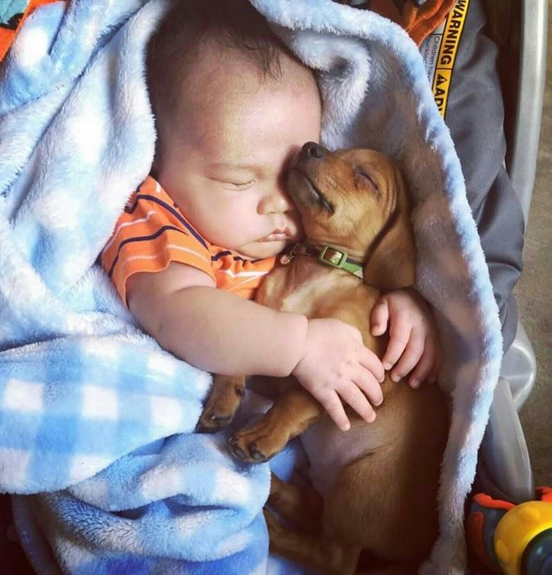 Adorable imagen de un bebe durmiendo con su perrito