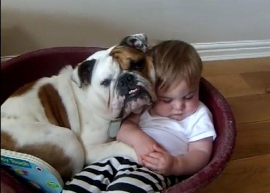 Adorable imagen de un perrro durmiendo con un bebe
