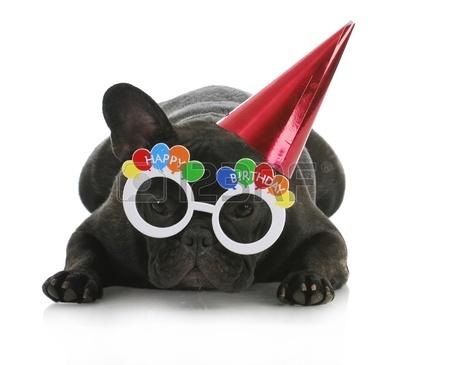 Feliz Año Nuevo Con Perritos