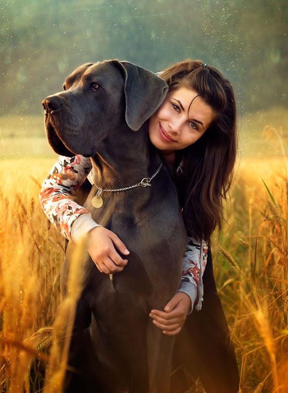 Fotos Acompañados de Nuestro Perro Gigante