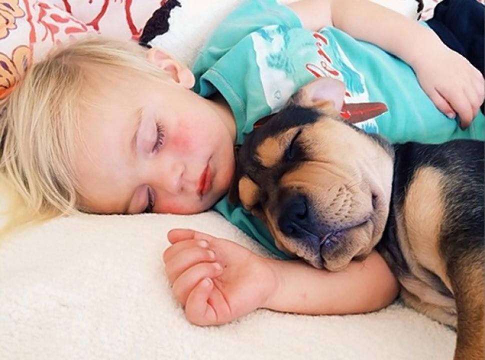 Fotos de niños y perros durmiendo