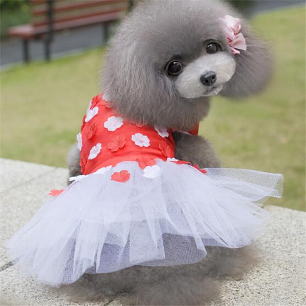Imagen de perrita vestida con traje de flores