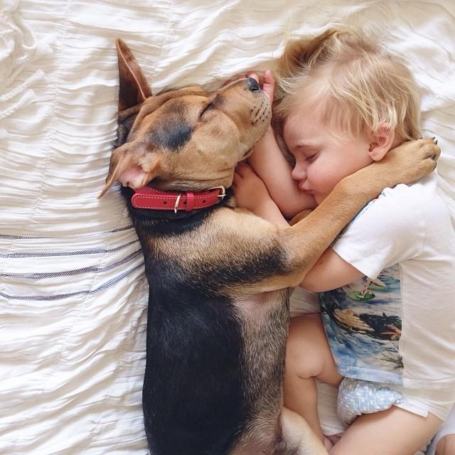 Imagenes Mas Lindas y Tiernas de Perros y Niños Durmiendo