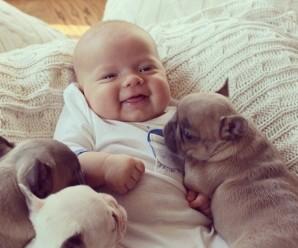 Imagenes Tiernas de Bebes Con Perritos