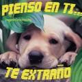Frases de Amor Con Imagenes De Perros Tiernos Para Facebook