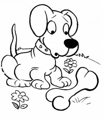 Imagenes de perros lindos para niños