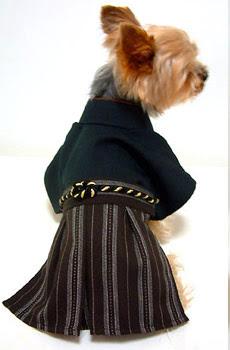 Imagenes de perros pequeños con ropa