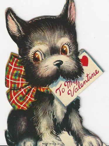 Imagen de Un Perrito Con Mensaje De San Valentin