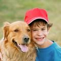 Las 10 mejores razas de perro para niños