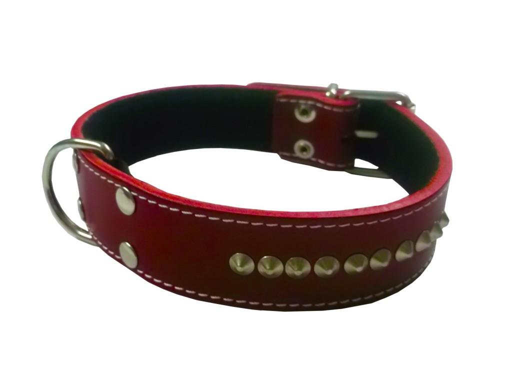 Imagenes de collares bonitos para perro