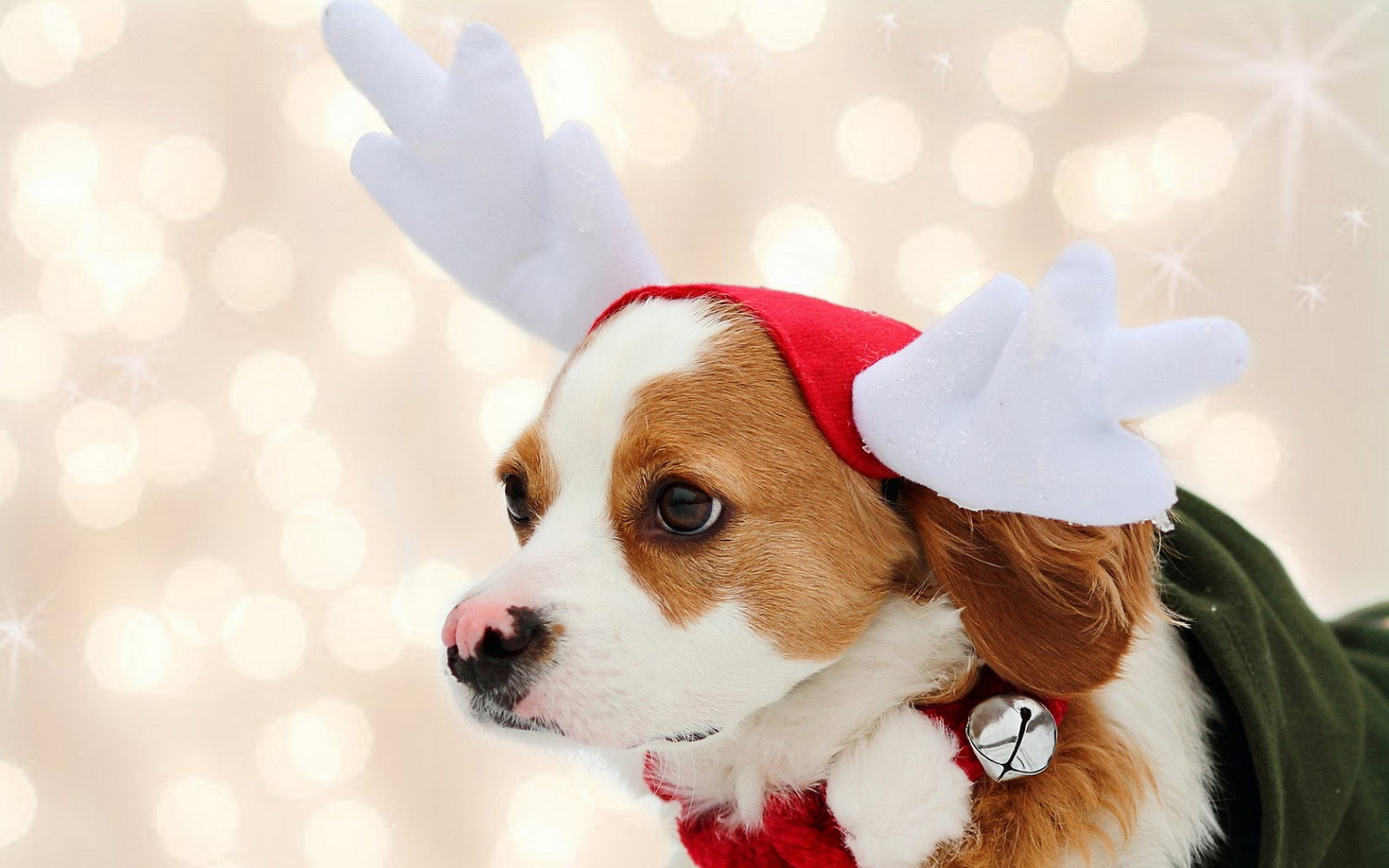 Fondos de pantalla navideños gratis descargar.