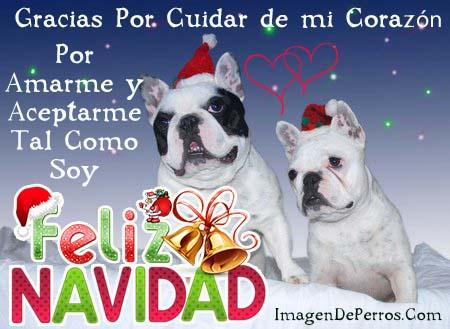 imagenes-de-perritos-con-mensajes-de-navidad-para-mi-amor