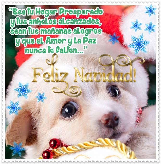 imagenes-de-perros-con-mensaje-navideno
