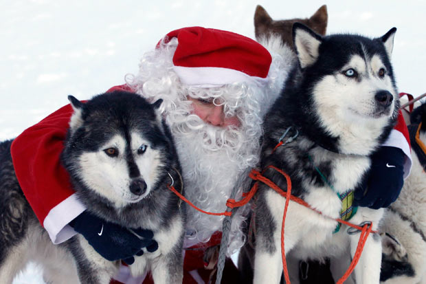 imagenes-de-papa-noel-en-la-nieve-con-unos-perritos