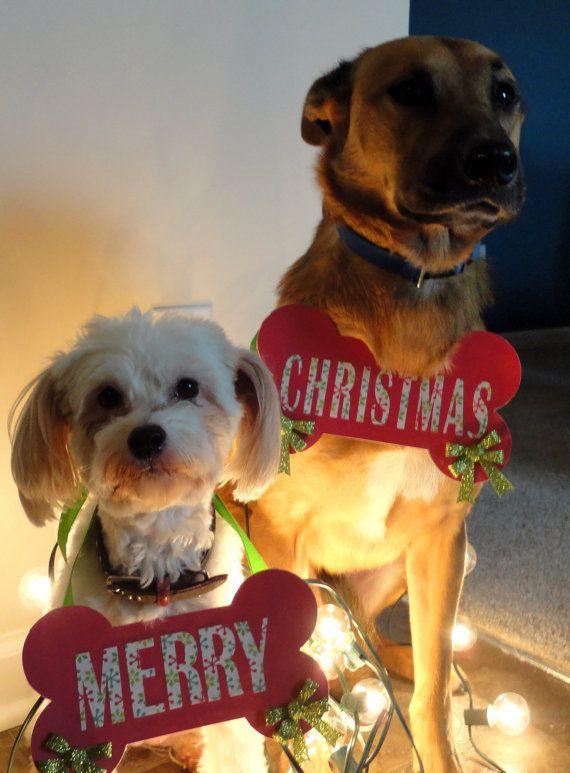 linda-imagen-de-perros-en-navidad-para-fondo-de-iphone
