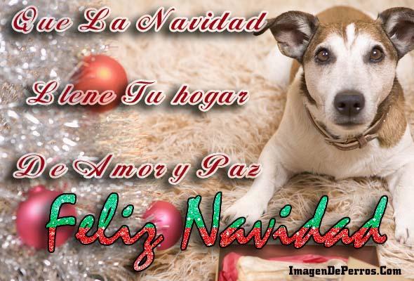 postal-feliz-navidad-con-perritos