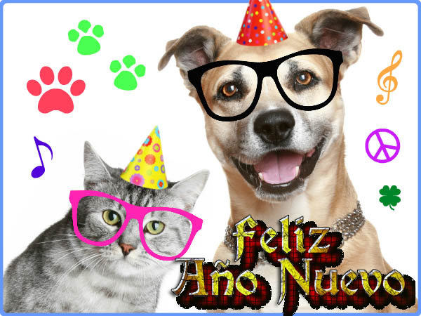 Descargar imagenes de perros con frase Feliz Año Nuevo